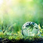 5 cosas sencillas que podemos hacer para salvar el planeta