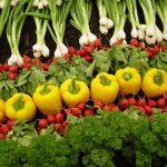 Impresionante incremento en la producción de alimentos ecológicos