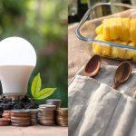 Productos para cuidar del medio ambiente