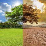 El cambio climático sigue siendo una de las principales preocupaciones globales